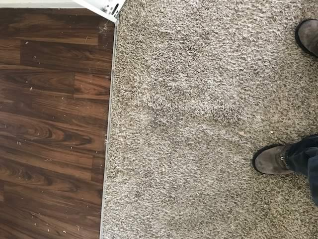 Finished Carpet Repair